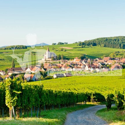 Alsace - Restaurant - Bar - Brasserie - Café - Salon de thé - Achat – Vente – Cession – Fonds de commerce – CHR – Licence IV – Licence 4